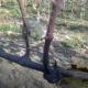 winobranie-cassiopeia-2013-28